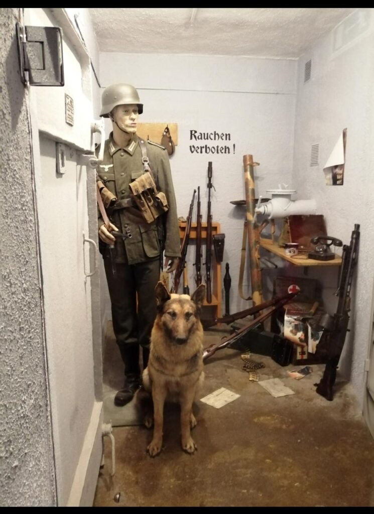 Museo Bunker